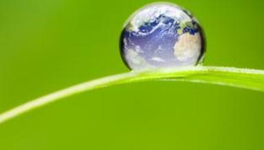 Bilden är hämtad från Naturskyddsföreningens hemsida