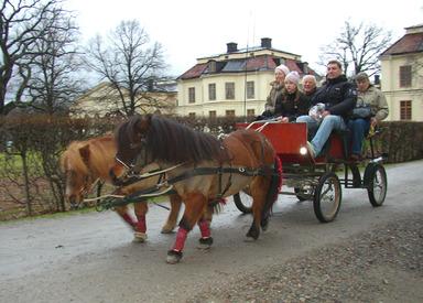 Drottningholms julmarknad. Foto: Per Ola Wiberg. CC(BY).