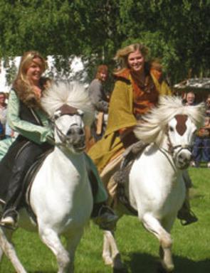 Stallarholmen Viking Festival 2011 – Festival för familjen med vikingatema