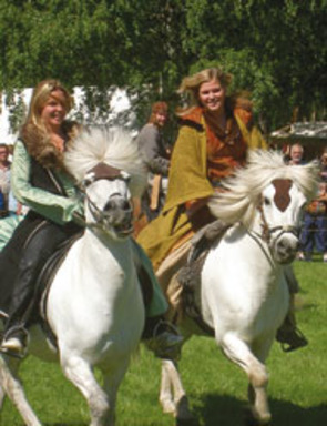 Stallarholmens Vikingar